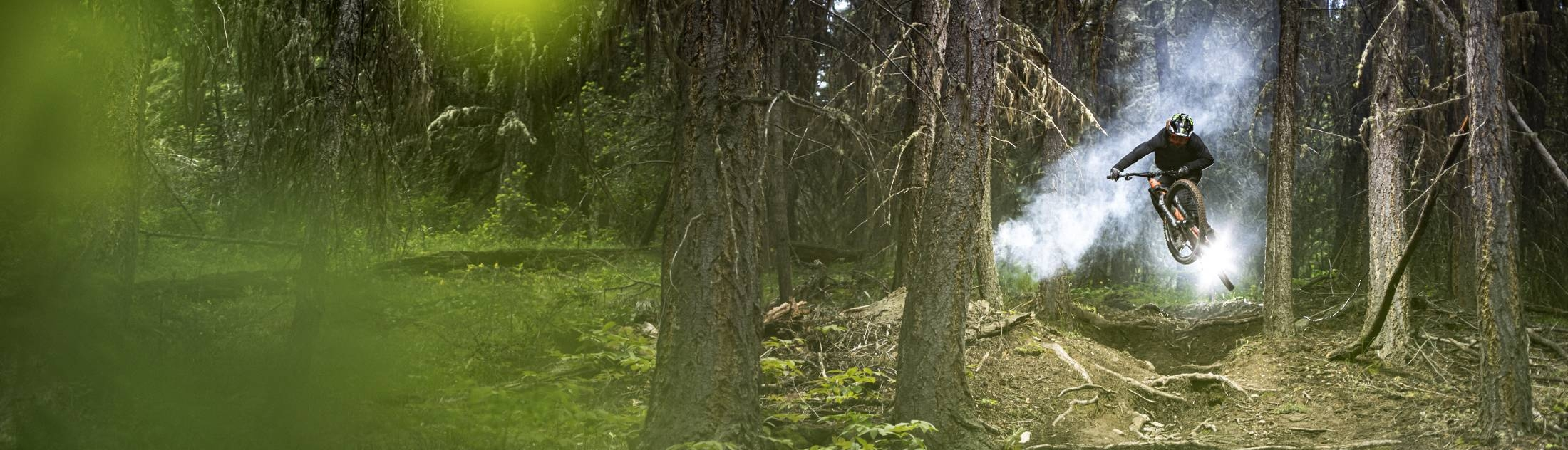 Evil Wreckoning in forest